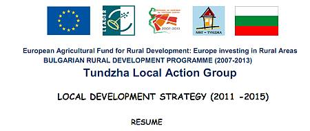 local-development-strategy